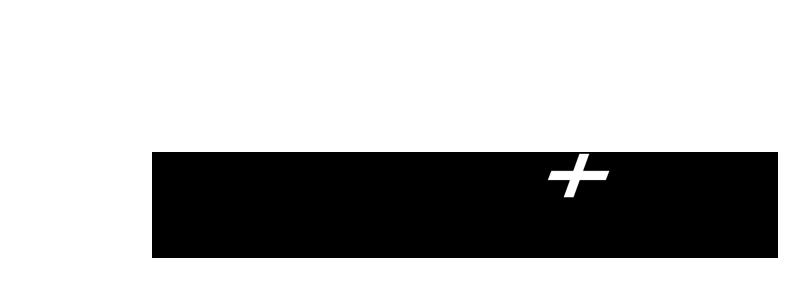 BODYSWISS - SWISSPLATE-Logo